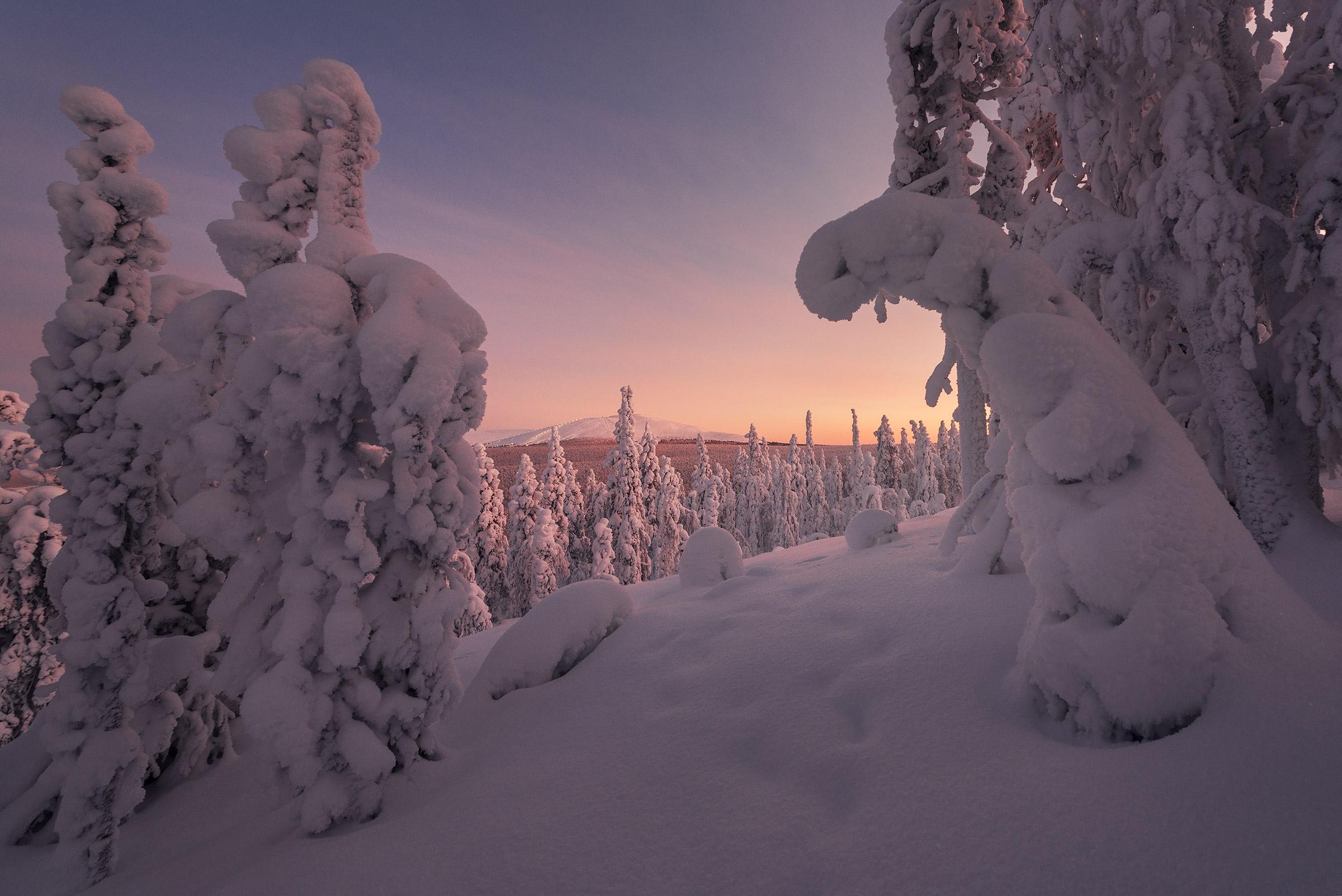 Lapland-17