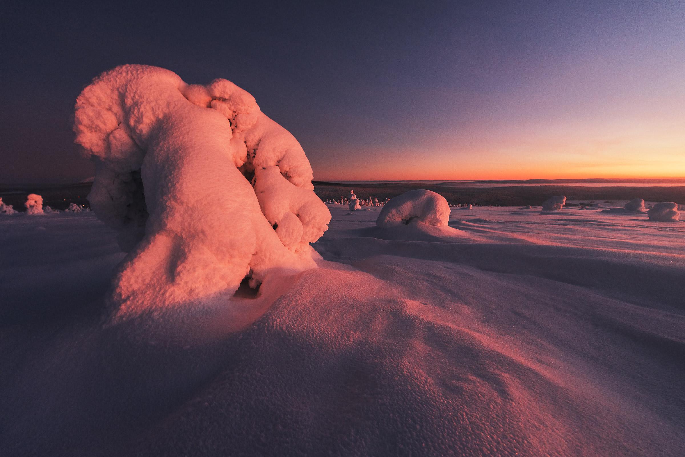 Lapland-44