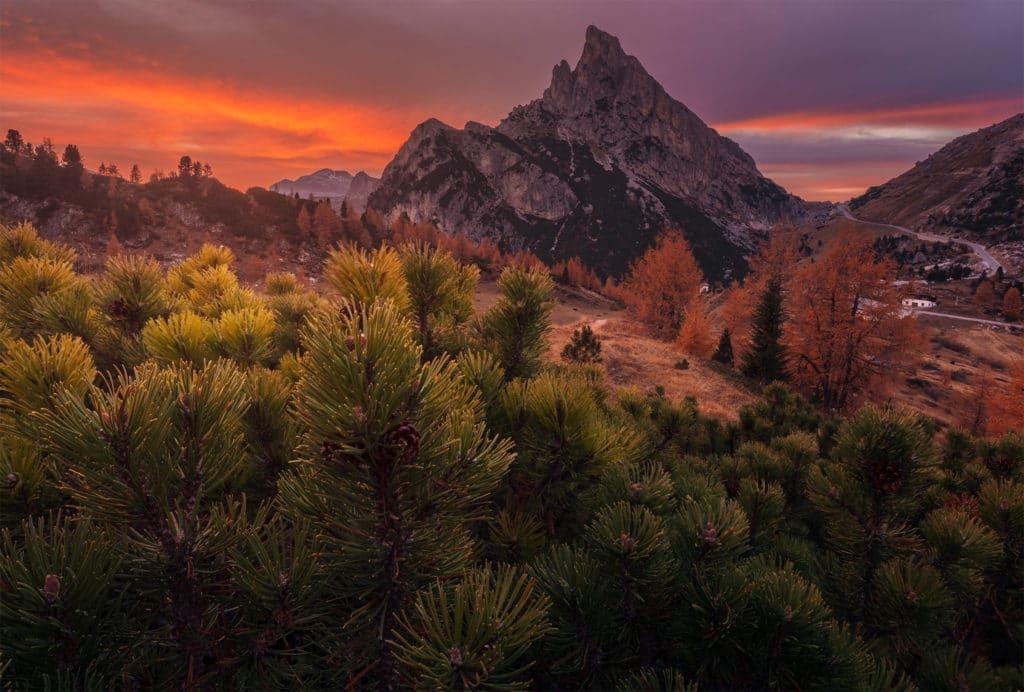 Sass de Sunset
