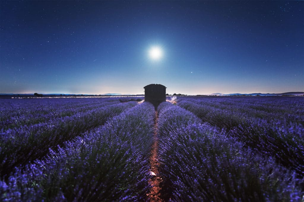 Romantic Provence
